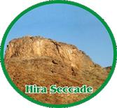 Hiraseccade